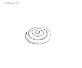 Straw Wattle
