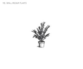 Small / Medium Plants